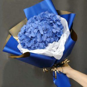 Букет из одной синей гортензии — Букеты цветов