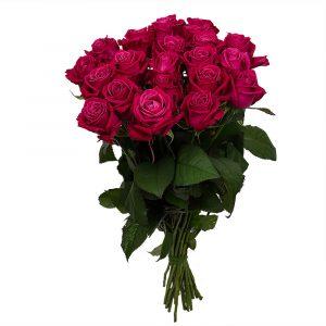 Букет из 15 премиум роз Эквадор — Букеты цветов